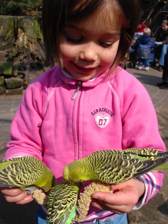 Alexandra en de vogels