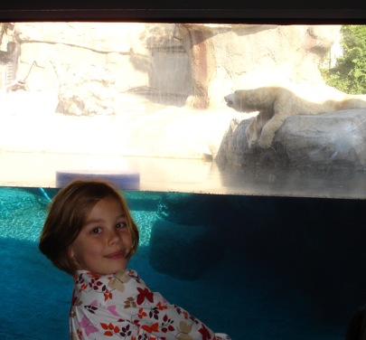 San Diego Polar bear