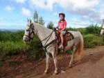 Paardrijden met zonsondergang