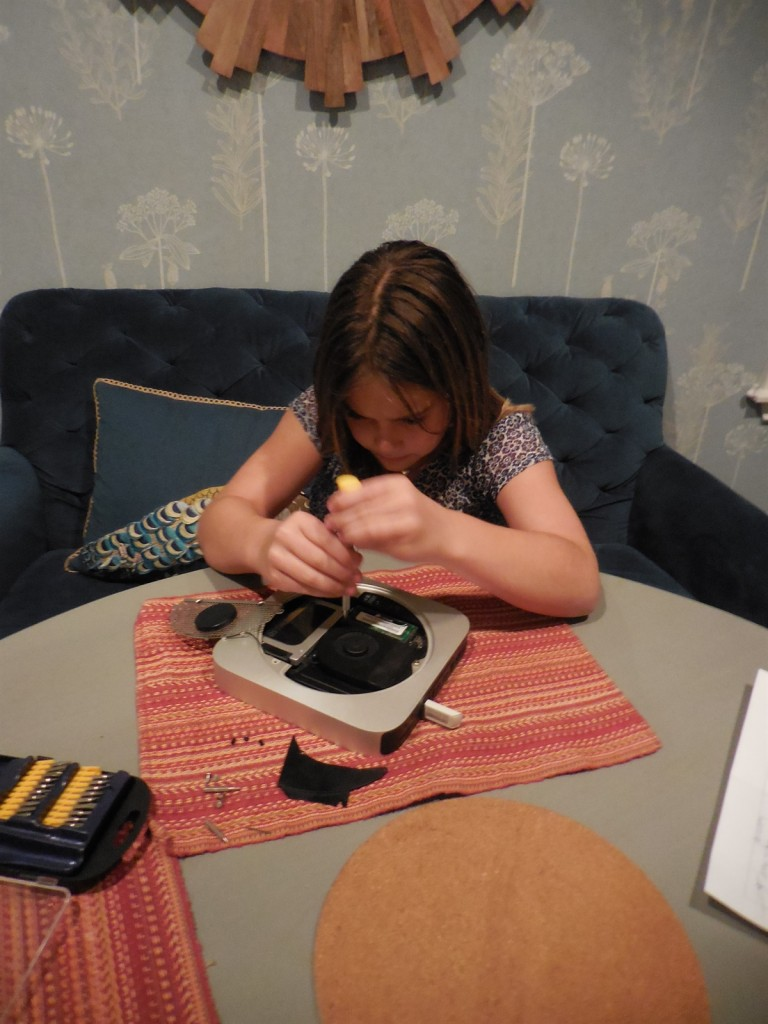 Lex repairing the Mac Mini